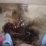 浴室排水溝清掃中