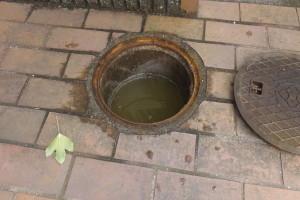 排水マス汚水溜まり状態