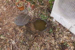 埋まっていた排水マス