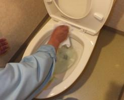 トイレ掃除中