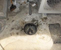 排水マス高圧洗浄作業