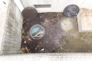 右の汚水マスから汚水が逆流し溢れている状態