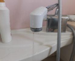 バスシャワー混合栓の水漏れ