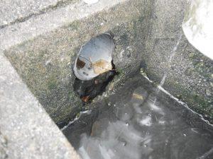 別の部分の雨水会所で破損発見