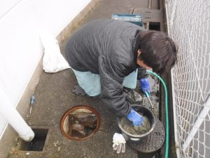 排水マス修理工事中