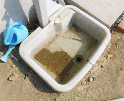 屋外手洗いの排水口から水が流れずにたまっています