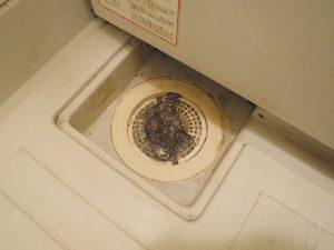 お風呂の排水溝も結構汚れがたまっていました