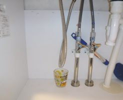 洗面台下でシャワーホースの水漏れをコップで受けていました
