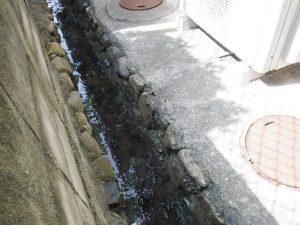 側溝に汚水水漏れの調査