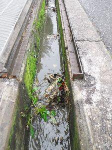 側溝に汚水が流れてしまっている様子