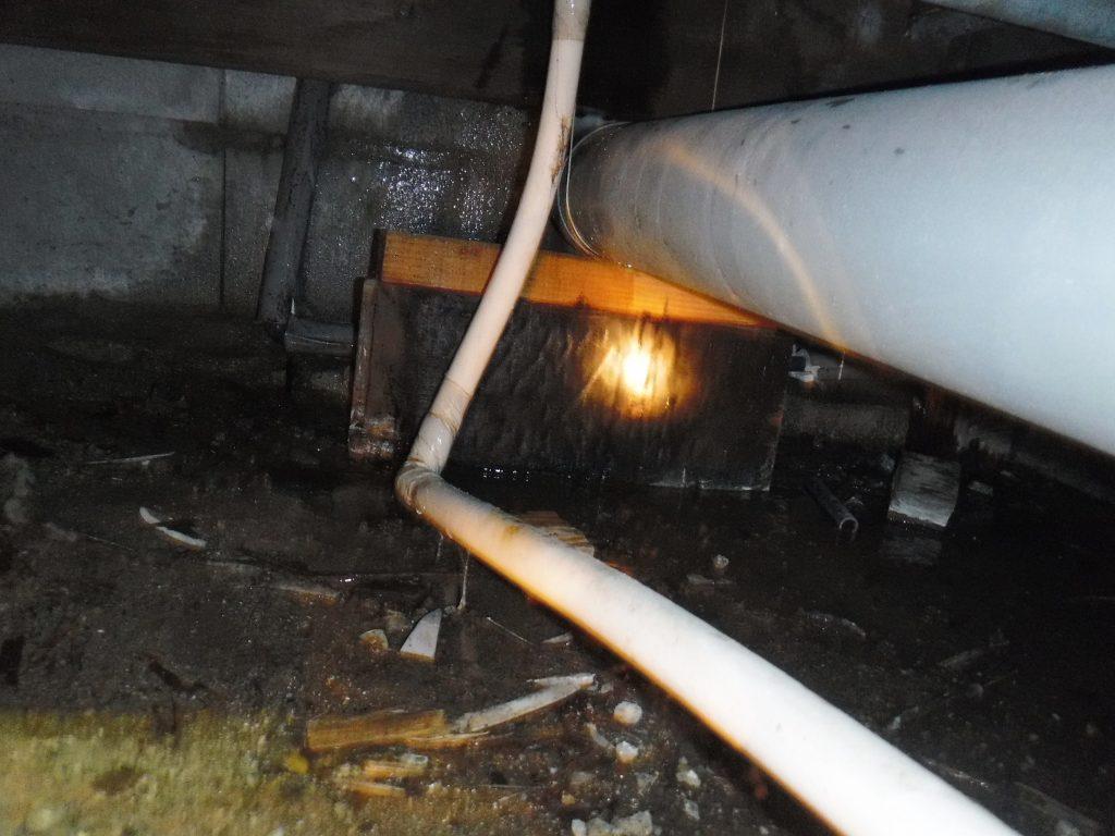 キッチン床下の排水管から逆流
