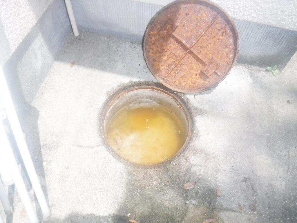 トイレの排水管が詰まってしまいました