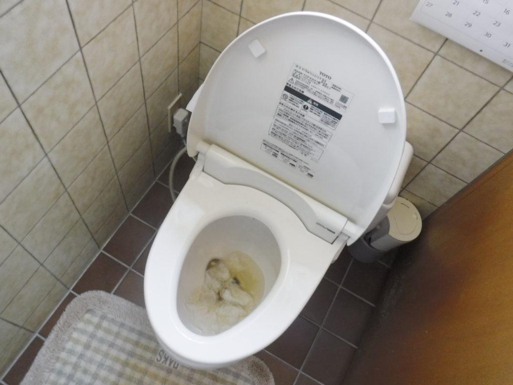 大阪府箕面市1階のトイレ詰まり