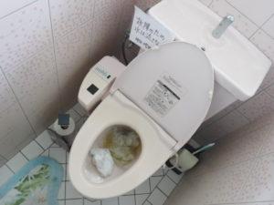 2階トイレ詰まりの状態