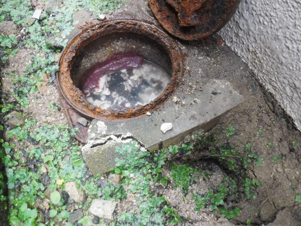 地面が陥没した排水桝周辺