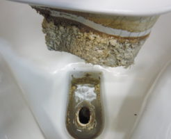 トイレの小便器が詰まって流れない