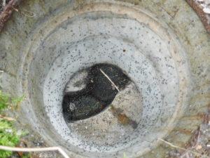兵庫県川辺郡猪名川町での排水つまり