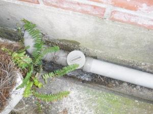 屋外パイプの排水口フタ
