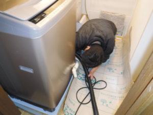 洗濯機排水口掃除中