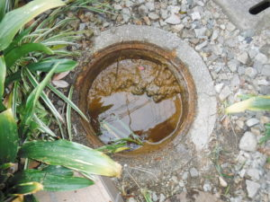 宝塚市トイレ詰まり、風呂つまりかけ排水管高圧洗浄前