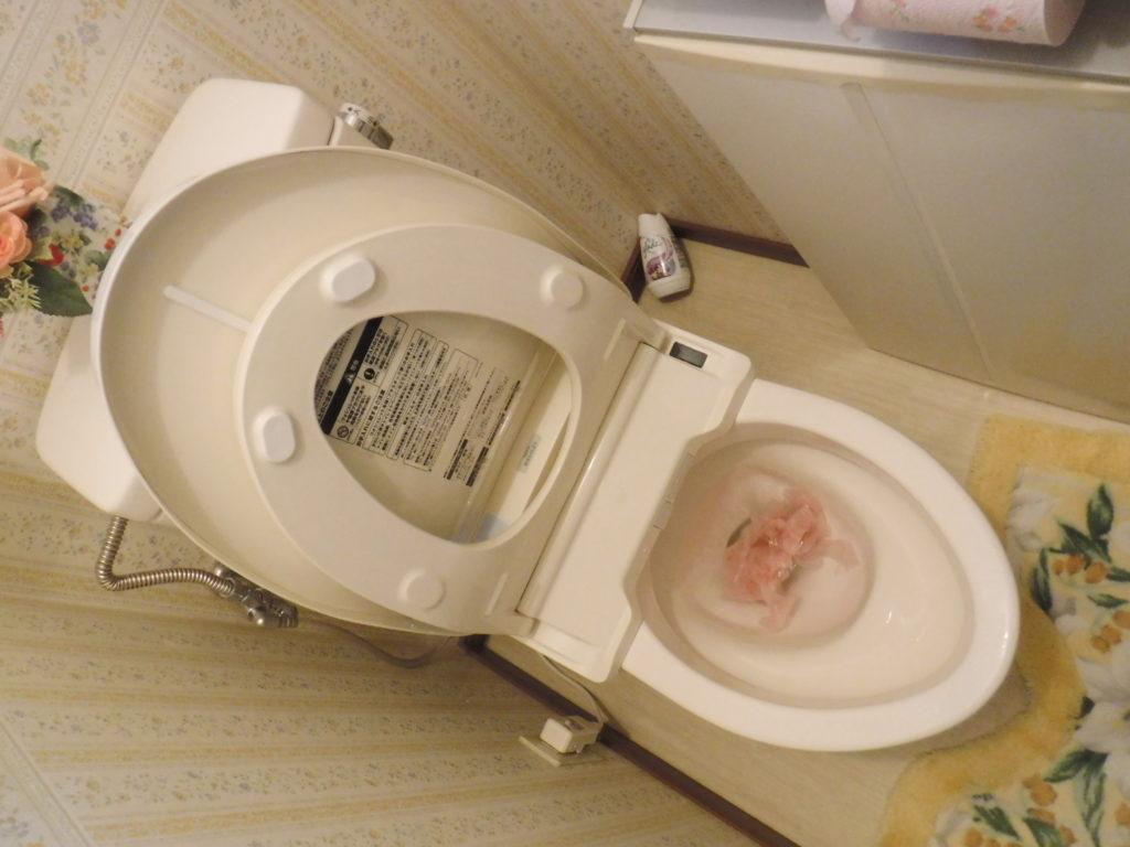 詰まって水が流れなくなったトイレの便器