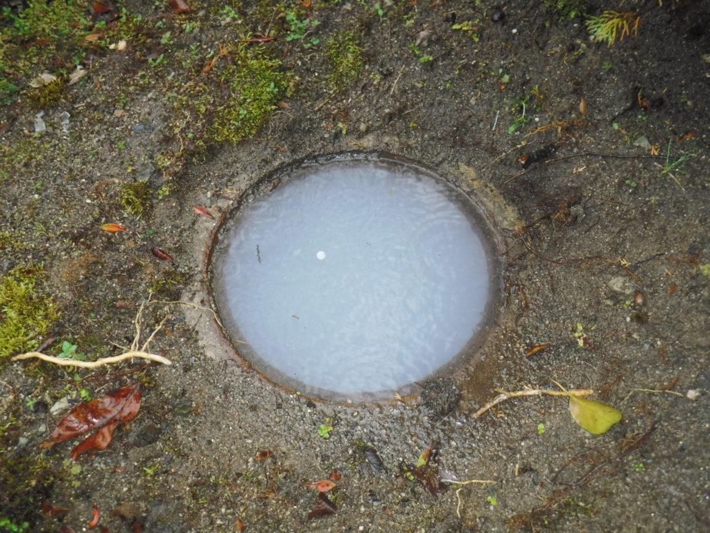 大阪府池田市でのお風呂の排水をするとトイレと風呂排水口からゴポゴポと音がする原因は屋外の下水の詰まりでした