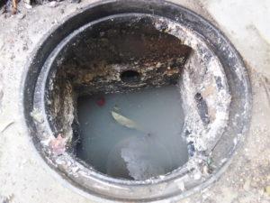 洗面所マンホールの掃除後
