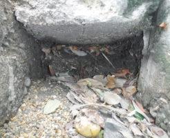 お家の玄関前の側溝詰まり、掃除前の様子