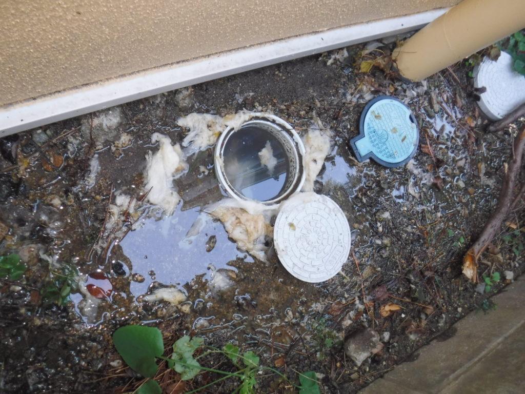 排水管が詰まってしまい屋外から水が逆流している状態