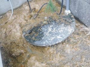 屋外排水マスから汚水が逆流している様子