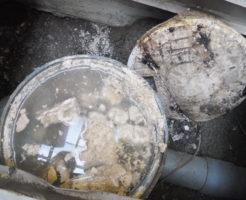 屋外排水管が詰まり、汚水マスや家の中の配管から水が逆流してくる状態