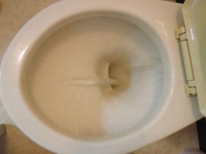 トイレもよく水が流れます